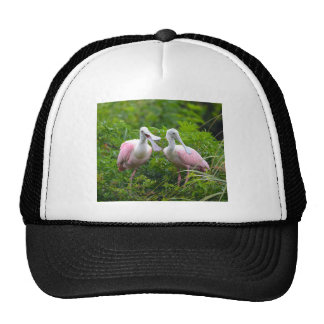 Can You Hear Me Now Trucker Hat