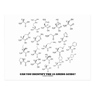 Can You Identify The 20 Amino Acids? (Chemistry) Postcard
