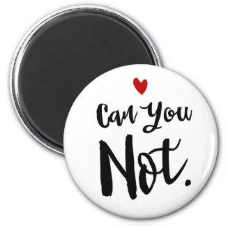 Can You NOT Sassy Introvert Magnet