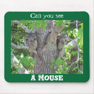 Can you see a mouse? mouse pad