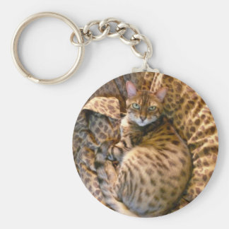 Can you see me? key chains