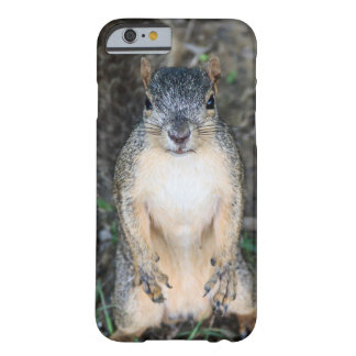 Can you spare a nut? (color) barely there iPhone 6 case