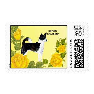Canaan Dog and Yellow Roses Postage