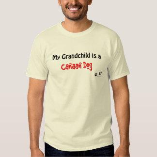 Canaan Dog Grandchild Tee Shirt