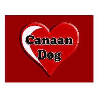 Canaan en el corazón para los amantes del perro postal