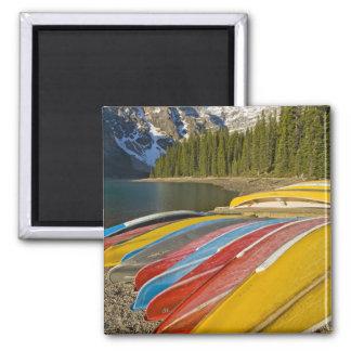Canada, Alberta, Banff National Park, Moraine Magnet