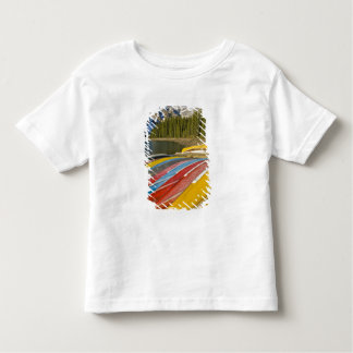 Canada, Alberta, Banff National Park, Moraine Tee Shirts