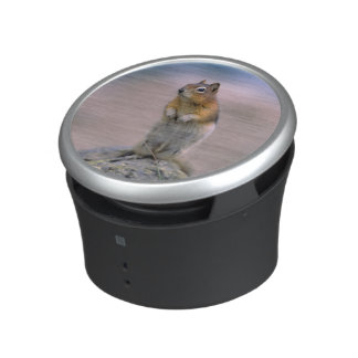 Canada, Alberta, Banff NP. A Golden-mantle Bluetooth Speaker