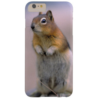 Canada, Alberta, Banff NP. A Golden-mantle Barely There iPhone 6 Plus Case