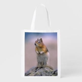 Canada, Alberta, Banff NP. A Golden-mantle Reusable Grocery Bag