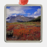 Canada, Alberta, Banff NP. Huckleberries bloom Metal Ornament