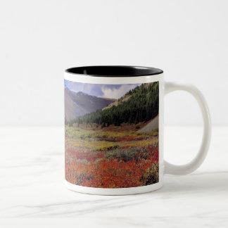 Canada, Alberta, Banff NP. Huckleberries bloom Two-Tone Coffee Mug
