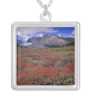Canada, Alberta, Banff NP. Huckleberries provide Silver Plated Necklace