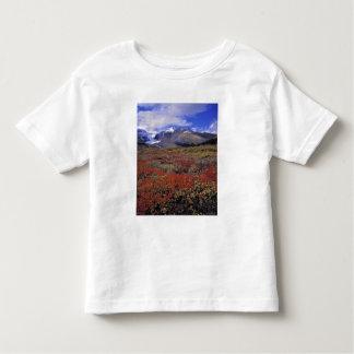 Canada, Alberta, Banff NP. Huckleberries provide Toddler T-shirt