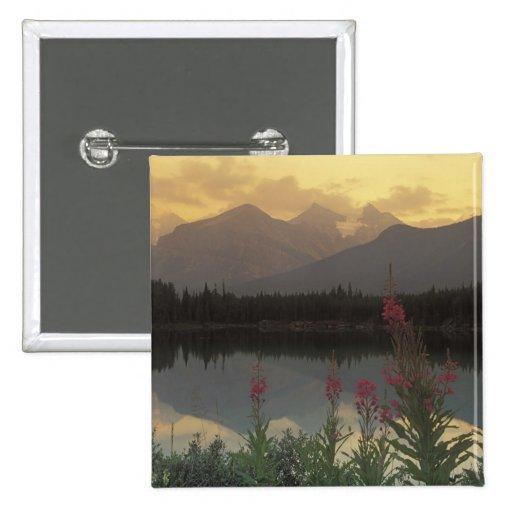 Canadá, Alberta, Banff. Salida del sol escénica de Pin Cuadrada 5 Cm