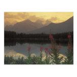Canadá, Alberta, Banff. Salida del sol escénica de Tarjetas Postales