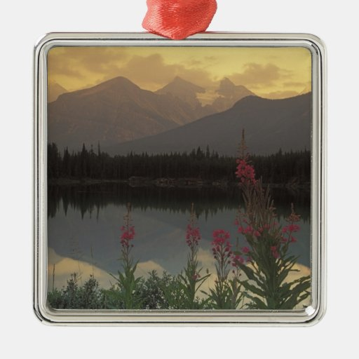 Canada, Alberta, Banff. Sunrise scenic of Metal Ornament