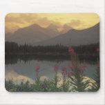 Canada, Alberta, Banff. Sunrise scenic of Mouse Pad