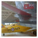 Canadá, Alberta, Edmonton: Aviación 2 de Alberta Azulejos
