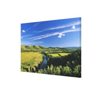 Canadá, Alberta, el río de Highwood a lo largo del Lona Envuelta Para Galerias