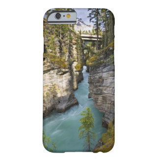 Canada, Alberta, Jasper National Park, Athabasca 2 Barely There iPhone 6 Case