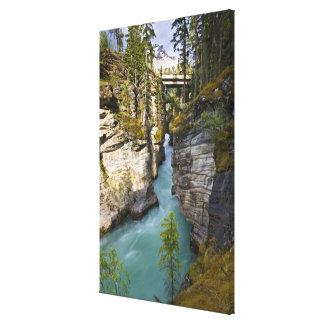 Canada, Alberta, Jasper National Park, Athabasca 2 Canvas Print