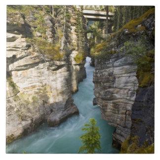 Canada, Alberta, Jasper National Park, Athabasca 2 Ceramic Tile
