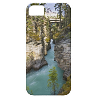 Canada, Alberta, Jasper National Park, Athabasca 2 iPhone SE/5/5s Case