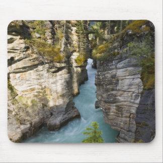 Canada, Alberta, Jasper National Park, Athabasca 2 Mouse Pad