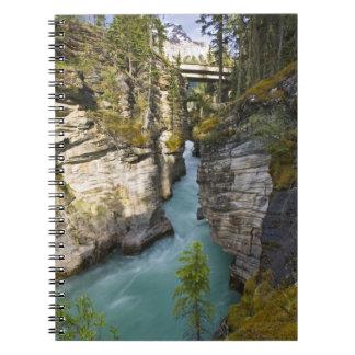Canada, Alberta, Jasper National Park, Athabasca 2 Notebook