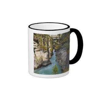 Canada, Alberta, Jasper National Park, Athabasca 2 Ringer Mug