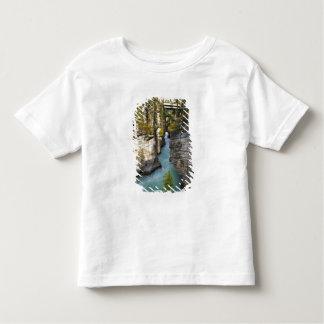 Canada, Alberta, Jasper National Park, Athabasca 2 Toddler T-shirt