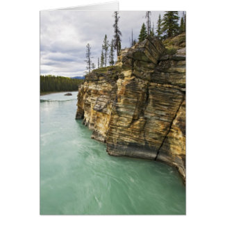 Canada, Alberta, Jasper National Park, Athabasca Card
