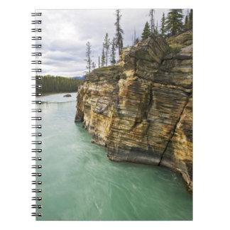 Canada, Alberta, Jasper National Park, Athabasca Notebook