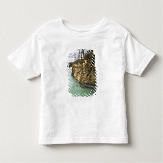 Canada, Alberta, Jasper National Park, Athabasca Toddler T-shirt