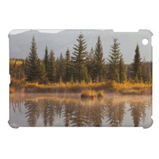 Canada, Alberta, Jasper National Park iPad Mini Covers