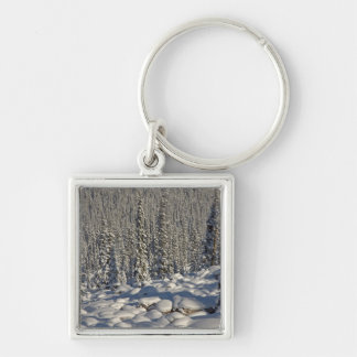 Canada, Alberta, Jasper National Park. Keychain