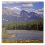 Canada, Alberta, Jasper National Park. Large Ceramic Tile