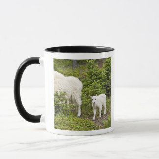 Canada, Alberta, Jasper National Park, Mountain 2 Mug