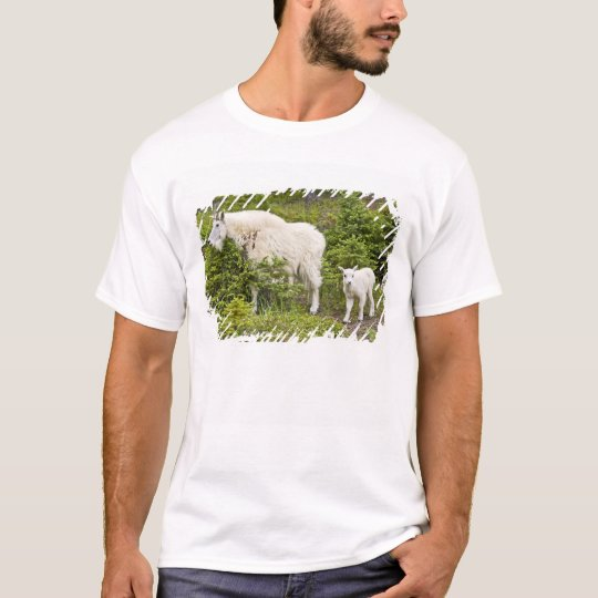 Canada, Alberta, Jasper National Park, Mountain 2 T-Shirt