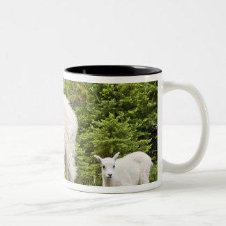 Canada, Alberta, Jasper National Park, Mountain 2 Two-Tone Coffee Mug