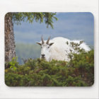 Canada, Alberta, Jasper National Park, Mountain 3 Mouse Pad