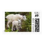 Canada, Alberta, Jasper National Park, Mountain Postage Stamp
