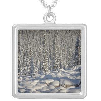 Canada, Alberta, Jasper National Park. Square Pendant Necklace