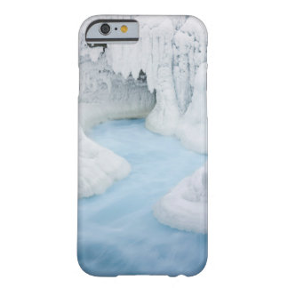 Canada, Alberta, Jasper National Park. The Barely There iPhone 6 Case