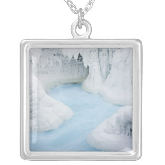 Canada, Alberta, Jasper National Park. The Silver Plated Necklace
