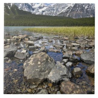 Canadá, Alberta, montañas rocosas, nacional de Ban Azulejo