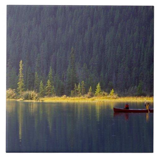 Canadá, Alberta, parque nacional de Baniff. Dos mu Azulejo