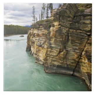 Canadá, Alberta, parque nacional de jaspe, Athabas Azulejo Cuadrado Grande