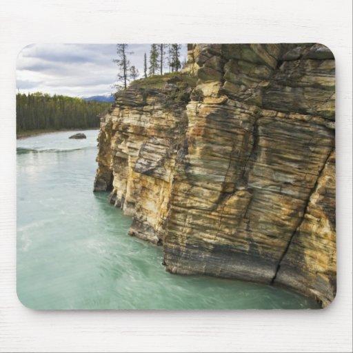 Canadá, Alberta, parque nacional de jaspe, Athabas Alfombrilla De Ratones